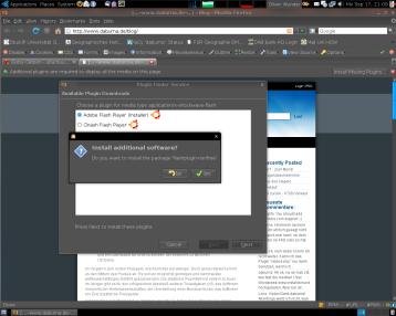 Flash aus Firefox installieren