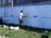 graffiti-hgw49.jpg