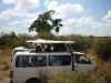 Safariautos