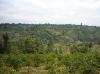 Landschaft um Mt. Kenya