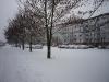 Winter in Schönwalde II