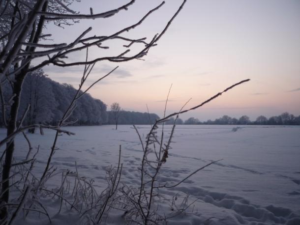 Blick aus dem Elisenhain