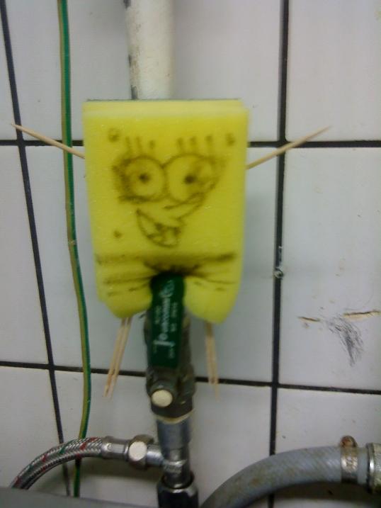 Spongebob (Abwasch-)Schwammkopf