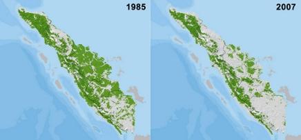WWF Karte Waldverlust auf Sumatra 1985 bis 2007. Screenshot. Karte: © Y.Uryu et al./WWF Indonesia-Sumatra Snapshots