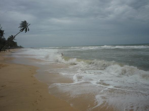 Hohe Wellen schlagend