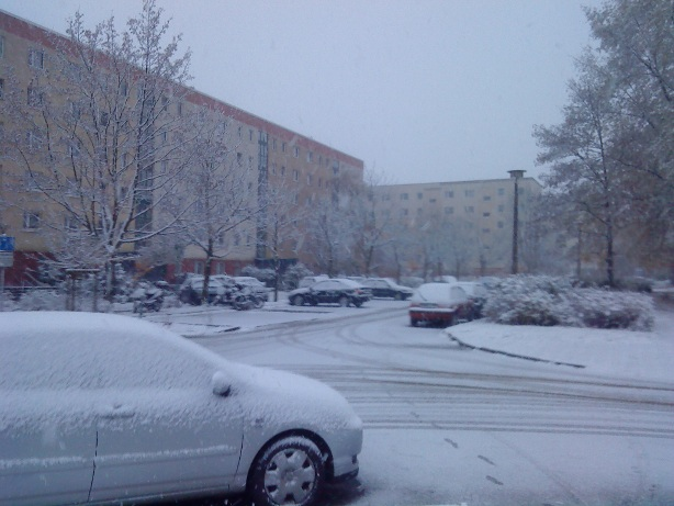 Schnee in Greifswald Winter 2009/2010
