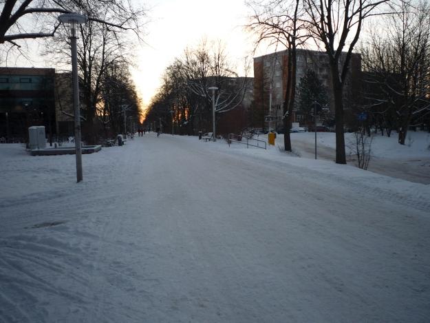 Rudolf-Petershagen-Allee im Schnee