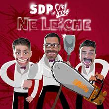 SDP feat. Sido - Ne Leiche - Cover