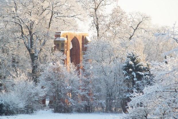 Klosterruine Eldena im Schnee